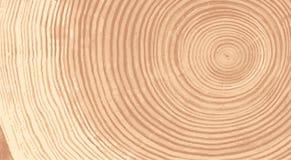 Vector houten textuur van golvend ringspatroon van een plak van boom Grayscale houten die stomp op wit wordt geïsoleerd Stock Afbeelding