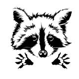 Vector hug raccoon 2 Royalty Free Stock Photos