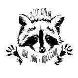 Vector hug raccoon Royalty Free Stock Image