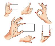 Vector female hand with card and hand gesture icon set. Vector human hand icon set. Female hand with card and thumb up, pointing finger, okay hand signs isolated Royalty Free Stock Photos