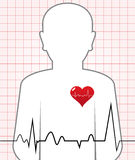 Vector Human Heart Beat stock photography