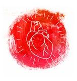 Vector Human Heart Symbol Royalty Free Stock Images