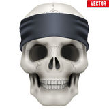 Vector Human skull with gangster bandana on head Stock Photos