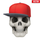 Vector Human skull with rap cap on head. Illustration isolated on background Royalty Free Stock Photo