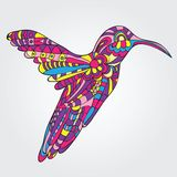 Vector Hummingbird Royalty Free Stock Photos