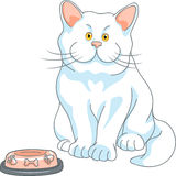 Vector hungry cute white cat with empty bowl Royalty Free Stock Image
