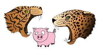 Vector hungry leopard and tiger want to eat a small piggy stock illustration