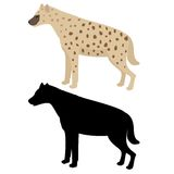 Vector hyena and silhouette Stock Image