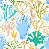 Vector i coralli e l'alga, modello senza cuciture delle alghe Flora del mare illustrazione di stock