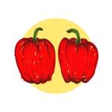 Vector i peperoni dolci disegnati a mano dettagliati illustrazione dell'incisione su fondo bianco Fotografie Stock Libere da Diritti