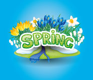 Vector icon. Spring flowers. Vector icon on blue background. Spring flowers Stock Photo