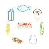 Vector icons for allergens Stock Photography