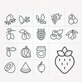 Simple vector illustration with ability to change. Vector icons with berries. Vector icons with berries. Simple vector illustration with ability to change royalty free illustration