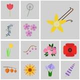 Vector icons blossom. Flat icons blossom. Icons set blossom. Icon vanilla, Royalty Free Stock Image