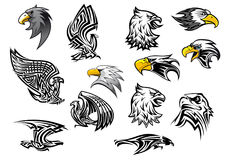 Vector icons eagle hawk bird for mascot or tattoo Royalty Free Stock Photography