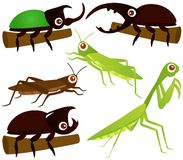 Vector Icons : Grasshopper, Beetle, Praying Mantis Royalty Free Stock Images