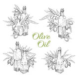Vector icons of olives and olive oil bottles Royalty Free Stock Images