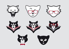 Vector icons of smiley cat faces. Set icons clever cats. Cute cat expressions. Set of intelligent lettered cats. Cat with a book. Cat with glasses. Set of icons Royalty Free Stock Image