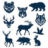 Vector icons of wild animals and birds for hunting Stock Photo
