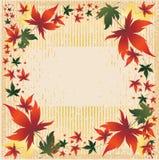 Vector il blocco per grafici con i fogli di autunno. Ringraziamento Immagine Stock