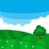 Vector il campo verde del prato con struttura, l'albero ed i fiori dell'erba illustrazione vettoriale