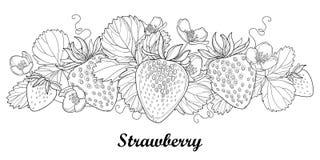 Vector il confine orizzontale con la fragola del profilo con la bacca, il fiore ed il fogliame nel nero su bianco Elementi della  illustrazione di stock