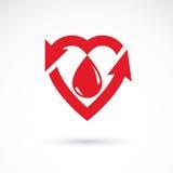 Vector il cuore rosso con l'iscrizione di circolazione sanguigna con il directi illustrazione di stock