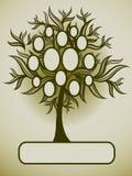 Vector il disegno dell'albero di famiglia con i blocchi per grafici illustrazione vettoriale