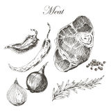 Vector il disegno della mano della carne della bistecca con il pepe e Fotografia Stock Libera da Diritti