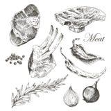 Vector il disegno della mano della carne della bistecca con il pepe e Immagini Stock Libere da Diritti
