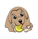 Vector il disegno di stile del fumetto di un cucciolo allegro che gioca con una pallina da tennis illustrazione di stock