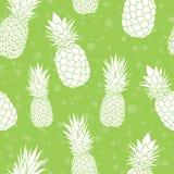 Vector il fondo senza cuciture tropicale variopinto del modello dell'estate verde degli ananas Grande come stampa del tessuto, in Immagine Stock Libera da Diritti