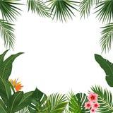 Vector il fondo tropicale della giungla con le palme ed i fiori Immagini Stock