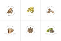 Vector il logo variopinto e gli emblemi dei modelli di progettazione stabilita - erbe e spezie Icona differente delle spezie per  royalty illustrazione gratis