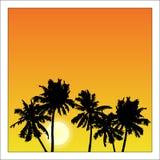 Vector il manifesto dell'estate incorniciato con le palme rosse ed arancio su wh royalty illustrazione gratis