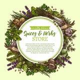 Vector il manifesto di schizzo per il deposito delle erbe e delle spezie royalty illustrazione gratis