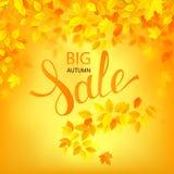 Vector il manifesto di vendita di autunno Illustrazione con le foglie di stagione Immagini Stock