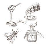 Vector il miele, i honeycells, il honeystick, ape Immagini Stock