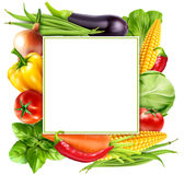 Vector il modello con le carote delle verdure, il cavolo, basilico del menu, a illustrazione di stock