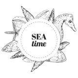 Vector il modello della cartolina d'auguri con l'insieme degli animali marini: coperture, conchiglie, cavalluccio marino e stelle royalty illustrazione gratis