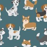 Vector il modello senza cuciture con i cuccioli svegli del cane del fumetto Fotografie Stock