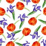 Vector il modello senza cuciture con i fiori del giardino dell'acquerello, illustrazione disegnata a mano di vettore Fotografie Stock