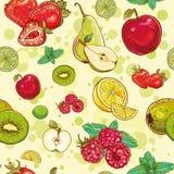 Vector il modello senza cuciture con la frutta fresca e le bacche Immagine Stock