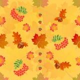 Vector il modello senza cuciture floreale con le foglie ed i fiori di autunno Fotografie Stock Libere da Diritti
