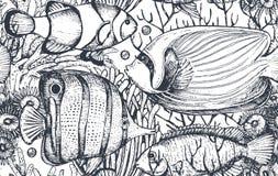 Vector il modello senza cuciture monocromatico del mare con i pesci tropicali, le alghe, coralli illustrazione vettoriale