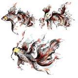 Vector il pesce rosso disegnato a mano nello stile dell'acquerello dipinto dai punti illustrazione di stock