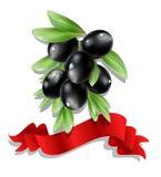 Vector il ramo di ulivo nero con il nastro rosso su fondo bianco Fotografia Stock