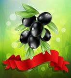 Vector il ramo di ulivo nero con il nastro rosso su un fondo verde Fotografie Stock Libere da Diritti
