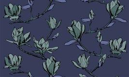 Vector il reticolo senza giunte Ornamento dei ramoscelli dei fiori della magnolia fotografia stock