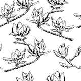 Vector il reticolo senza giunte Ornamento dei ramoscelli dei fiori della magnolia fotografie stock libere da diritti